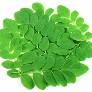 Murunka(Drumstick) Leaves 500g