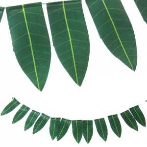 Mango Leaves 100g